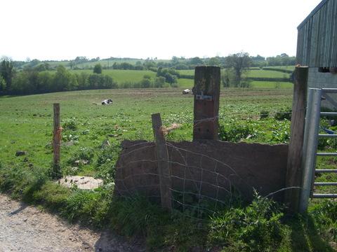 Oulton House Farm – Sunday 1st May | Milwich Parish Website