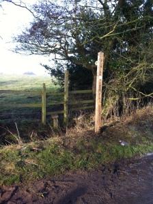 New post alongside Fradswell Lane
