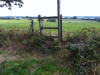 The old, stepless stile