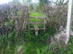 Another rotten stile