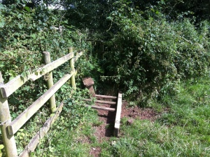Stile collapsed and path over bridge very overgrown.